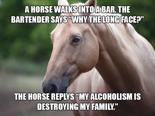 joke-horse.jpg