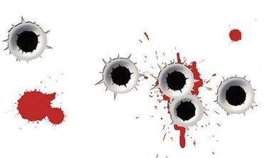 5a74cbff9dbf0_BulletHoles.JPG.6370936c2cdbba4ca67adf2e61ab909c.JPG