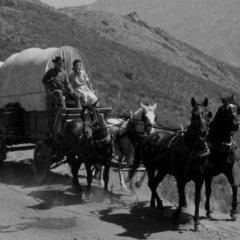 Wagon Train McClain