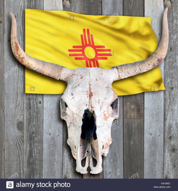 NM flag and skull.jpg