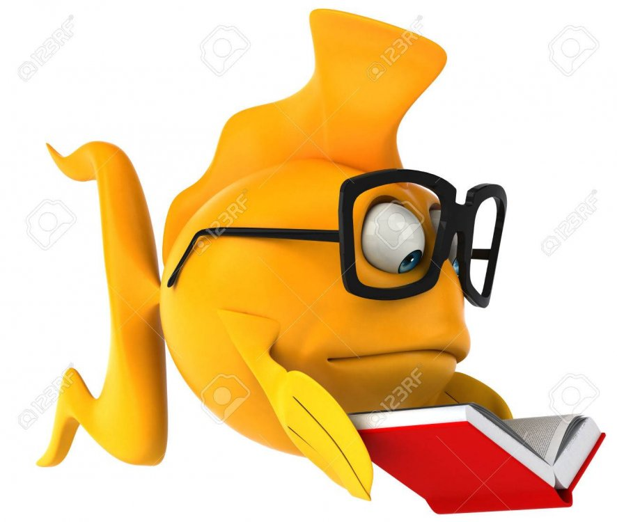 fish-with-glasses-and-book.jpg