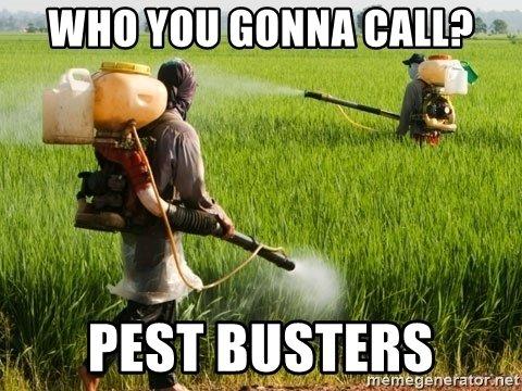 1720043829_PestBusters.jpg.deaeda86bafd2f22427354214bd1056d.jpg