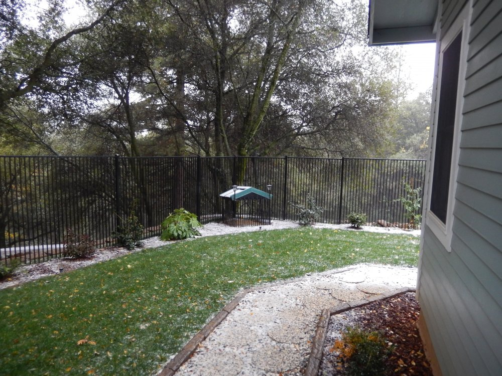 side yard snow11252015.JPG