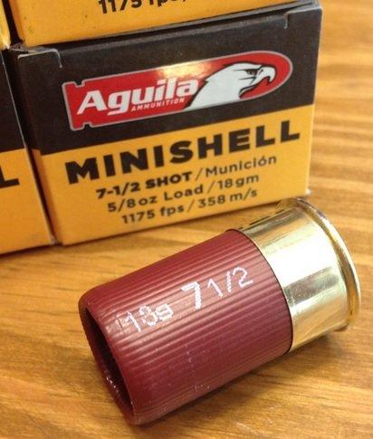 MiniShells.jpg