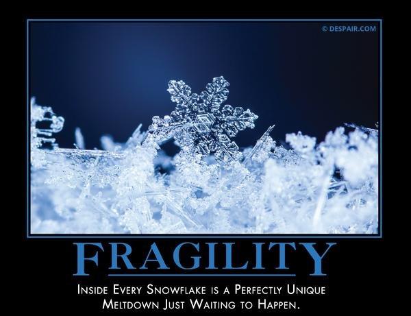 fragility.jpg