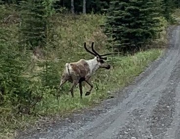 Alaska 005.JPG