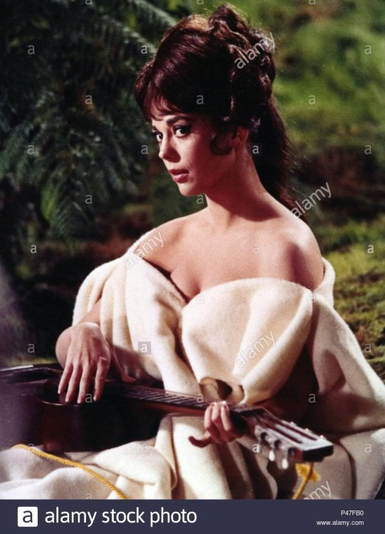 original-film-title-the-great-race-english-title-the-great-race-film-director-blake-edwards-year-1965-stars-natalie-wood-credit-warner-brothers-album-P47FB0.jpg