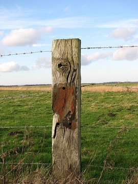 A_well-weathered_fence_post_-_geograph.org.uk_-_666453.jpg
