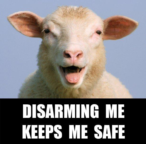 meme.gun.control.051.sheep.disarm keeps me safe.jpg