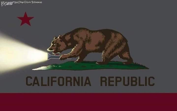 californianewflag.jpg