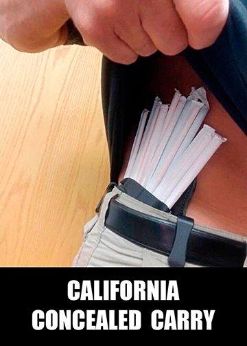 meme.gun.control.080.straw.california.concealed.carry.360.sfw.jpg