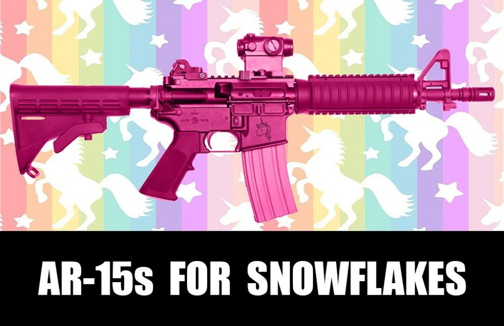 meme.gun.control.100.ar15.for.snowflakes.cupcakes.unicorns.sfw.jpg