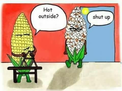 hot outside.jpg