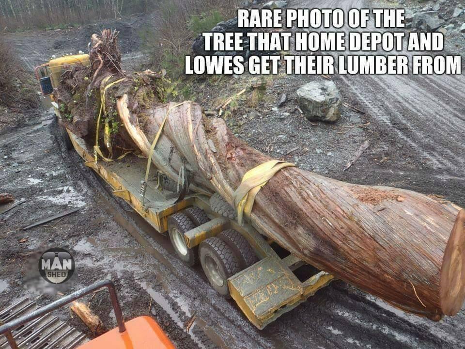 Lowes lumber.jpg