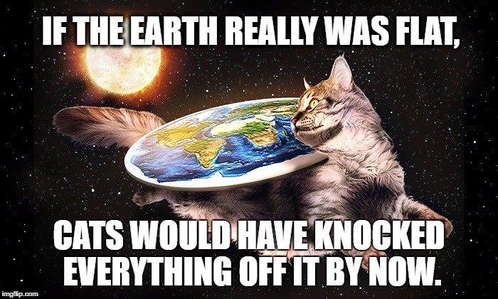 flat earth cats.jpg
