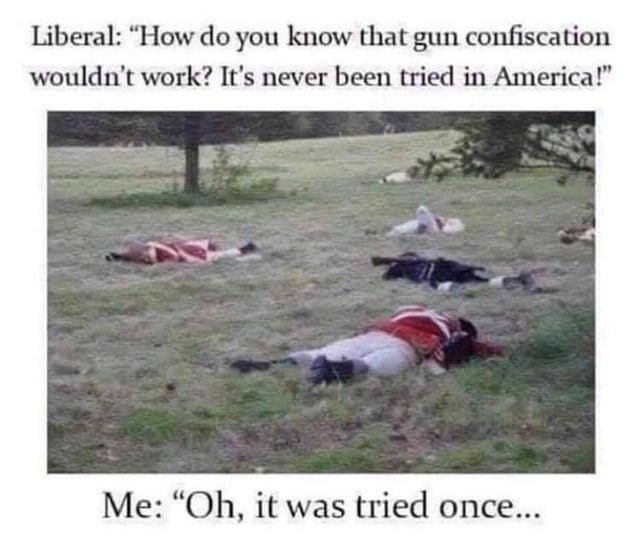 gunconfiscation.jpg