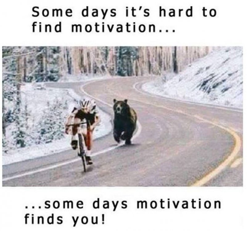 Bike-Motivation.jpg