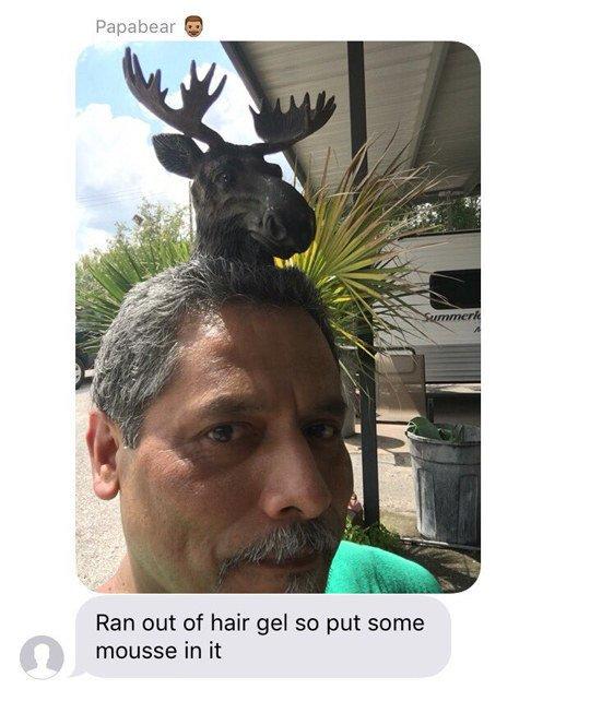 Hair moose.jpg