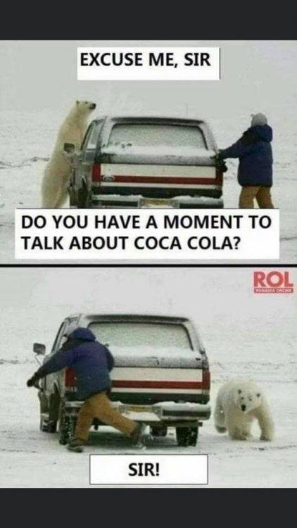 cocacolabear.jpg