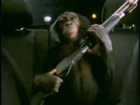 monkeywith12gauge.jpg