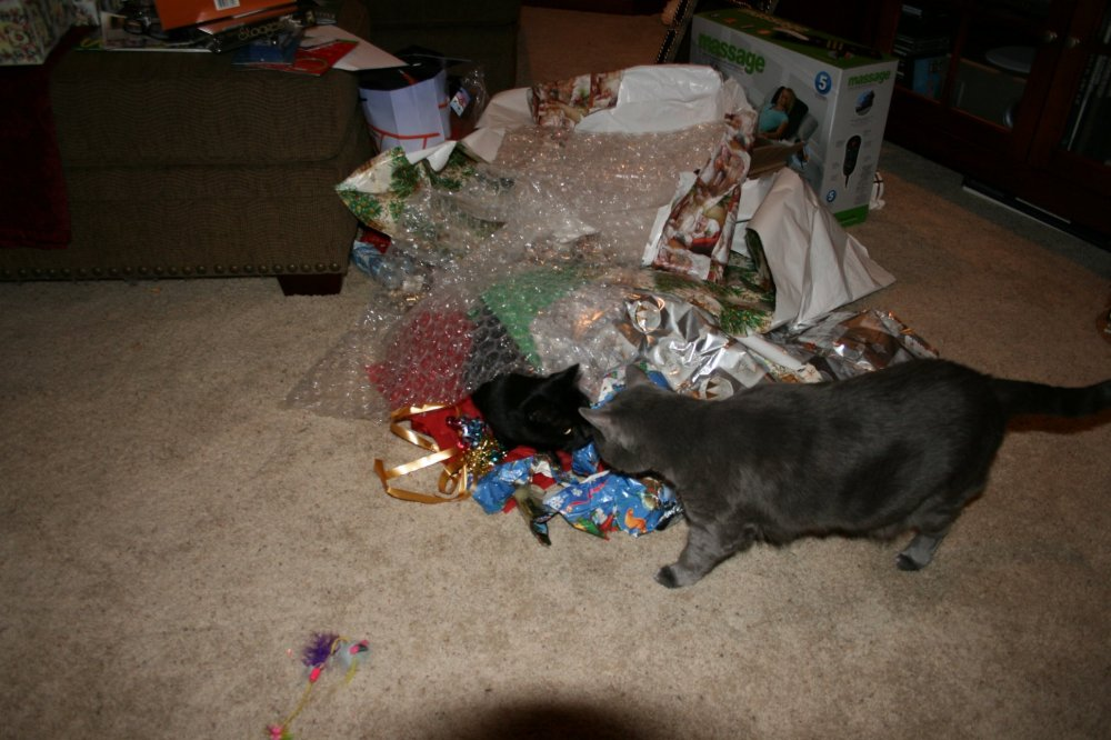 Christmas 2008 134.JPG