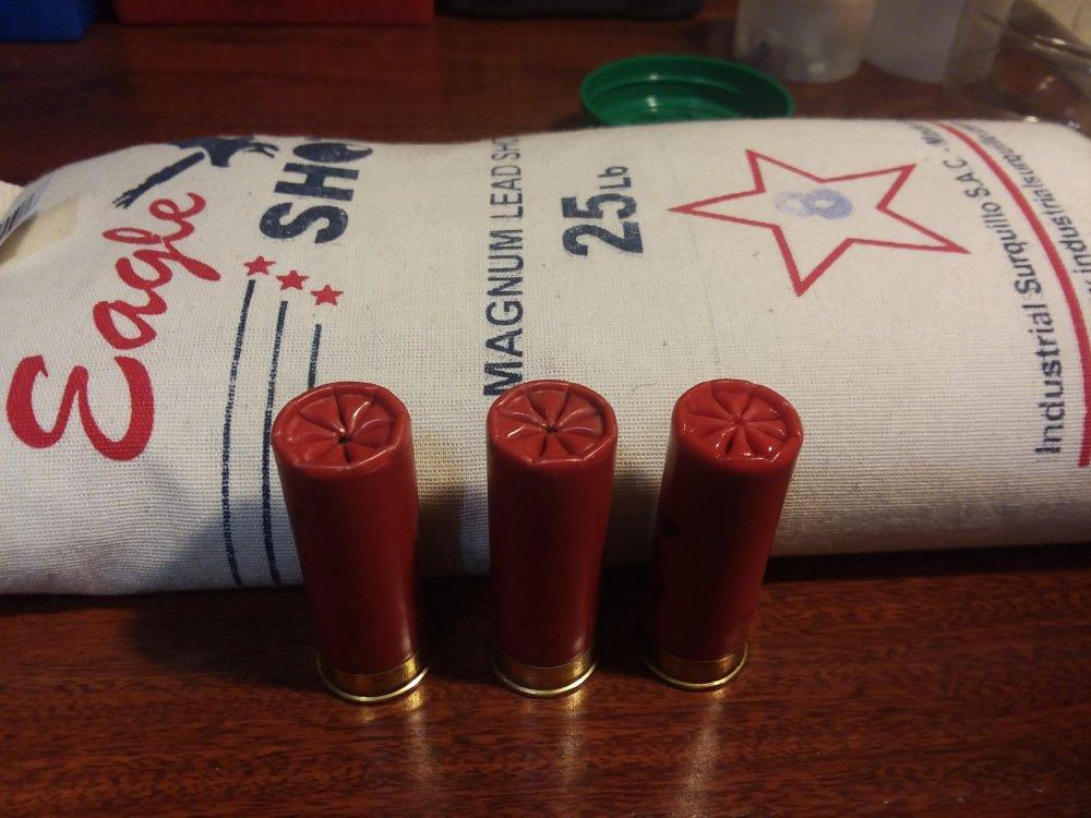 952573331_ShotgunloadsMEC600JrFeb2020.thumb.jpg.0194261a1184bc99f198523c3ffa8691.jpg