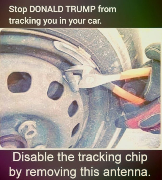trumptrackingchip.jpg
