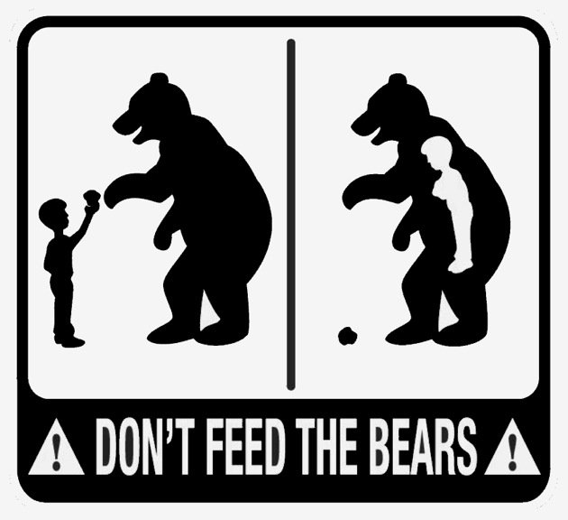 Don't Feed the Bears GS.jpg