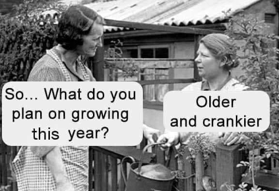 growingolderandcrankier.jpg