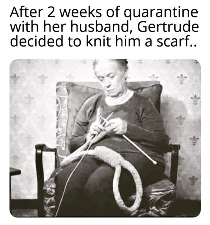 knittedascarf.png
