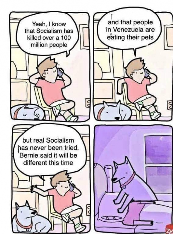 socialismandthedog.png