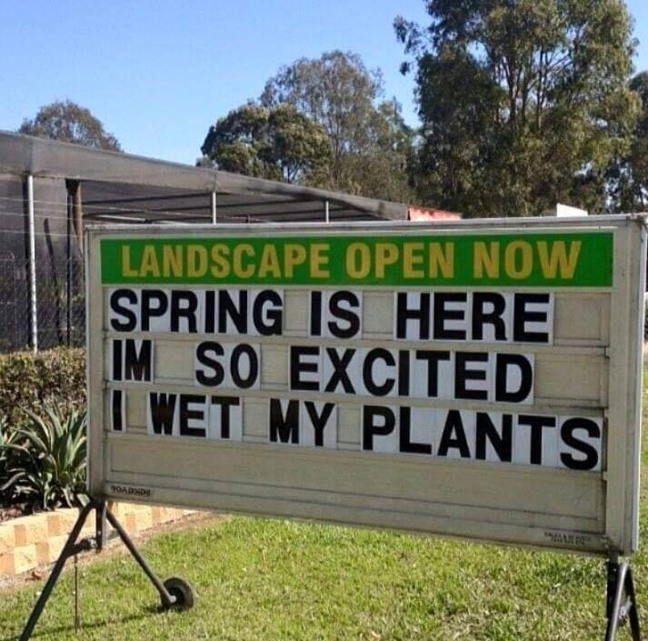 springwetmyplants.jpg