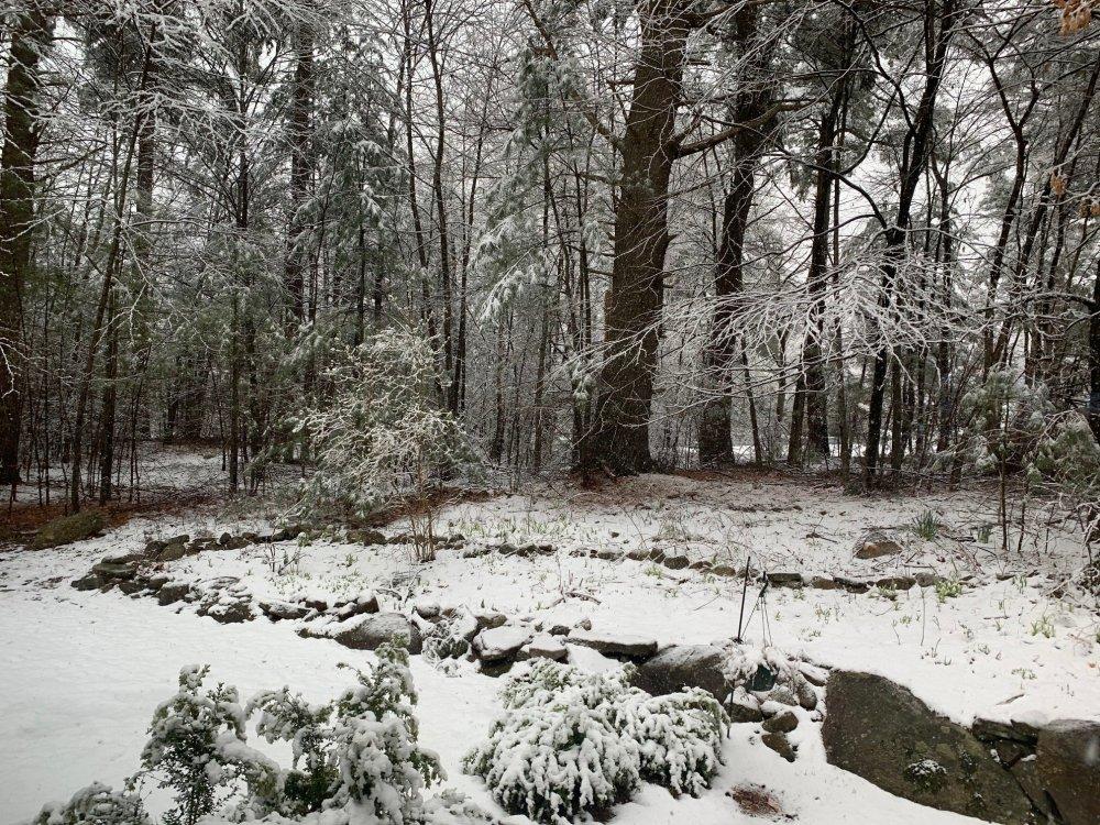 2020 04 18 SNOW 001.jpg