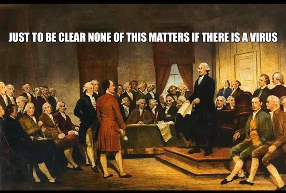 constitutionalvirus.jpg