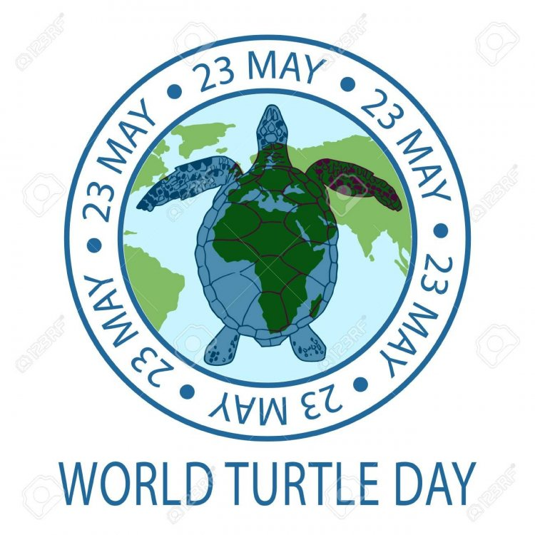 100232159-world-turtle-day-23-may-background-vector-illustration.thumb.jpg.427d6318071fc4892a3d297758cb7c94.jpg