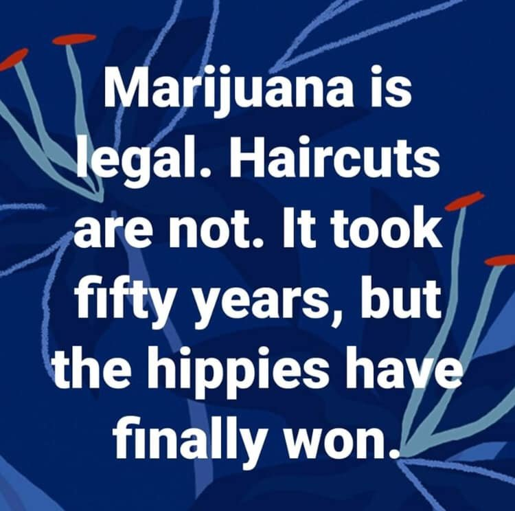 hippieswon.jpg