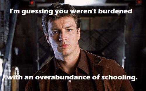 overabundance-of-schooling.jpg