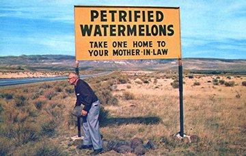 petrified.watermelons.sfw.jpg