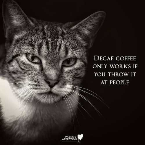 quote-decaf-coffee-only-works-if-you-throw-it-at-people.jpg