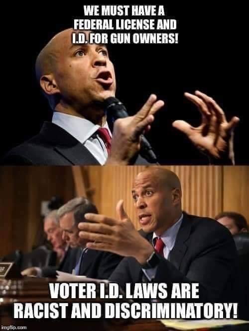 votervsgunid.jpg