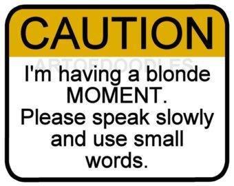 blonde joke.jpg