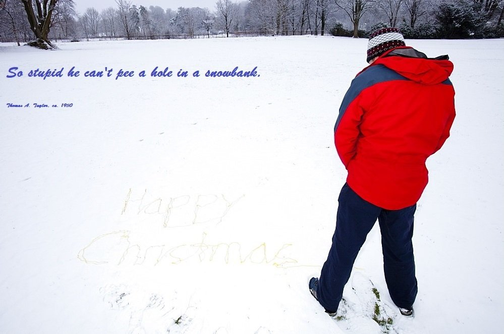 Hole in a snowbank..jpg