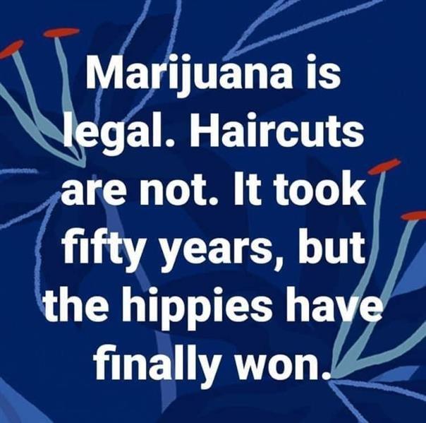 haircuts legal.jpg
