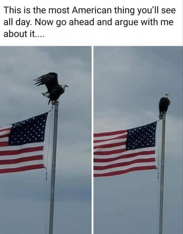 eagleflag.jpeg