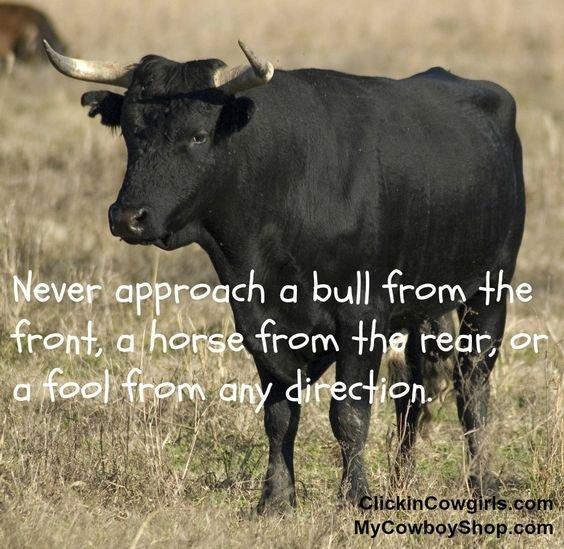 Cowboy Saying.jpg