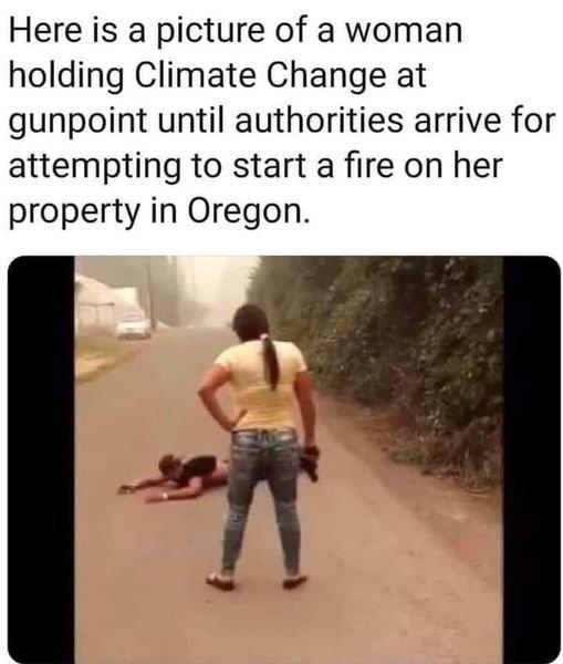 climatechangegunpoint.jpg