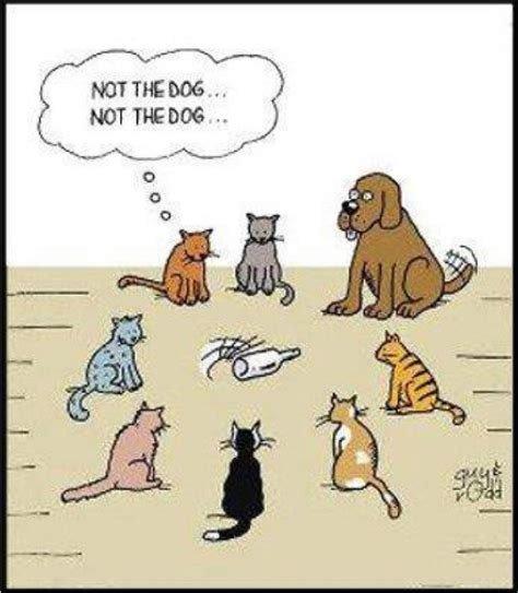 dogthebottlecartoon.jpg