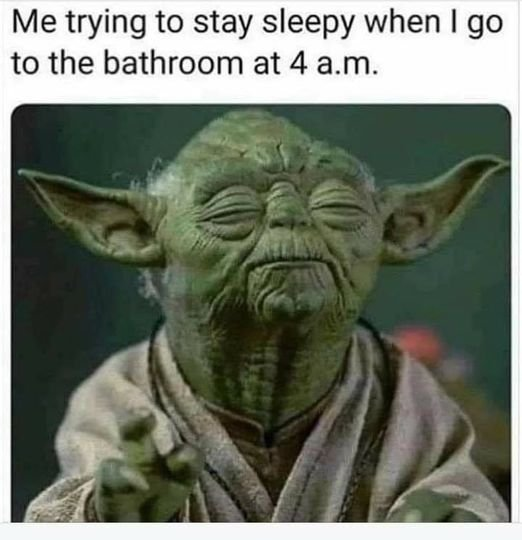 sleepybathroomyoda.jpg