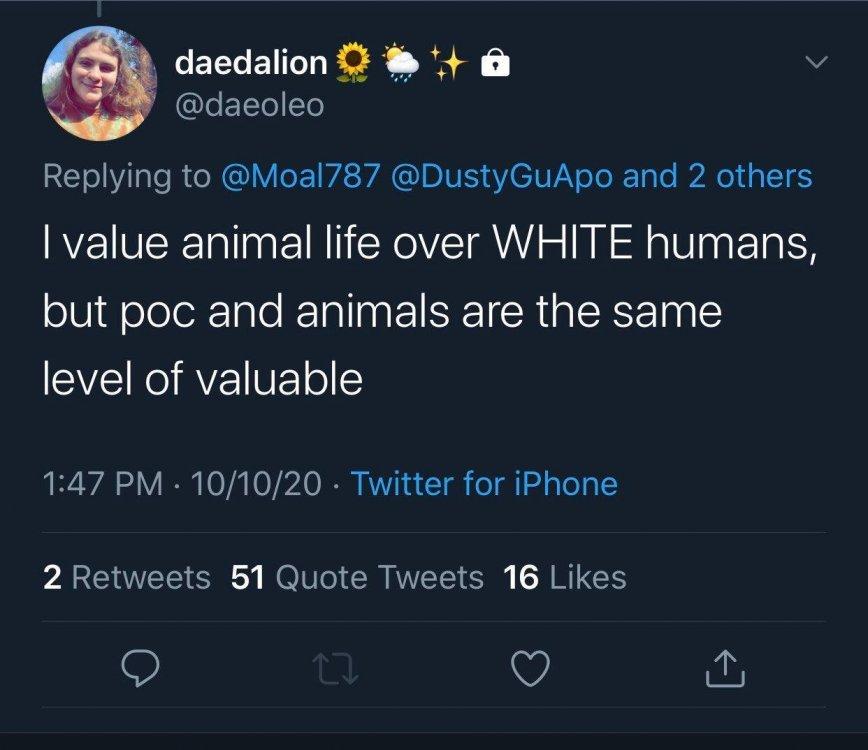 animalspoc.jpeg