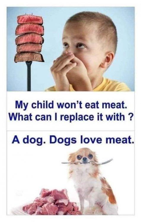 dogslovemeat.jpg